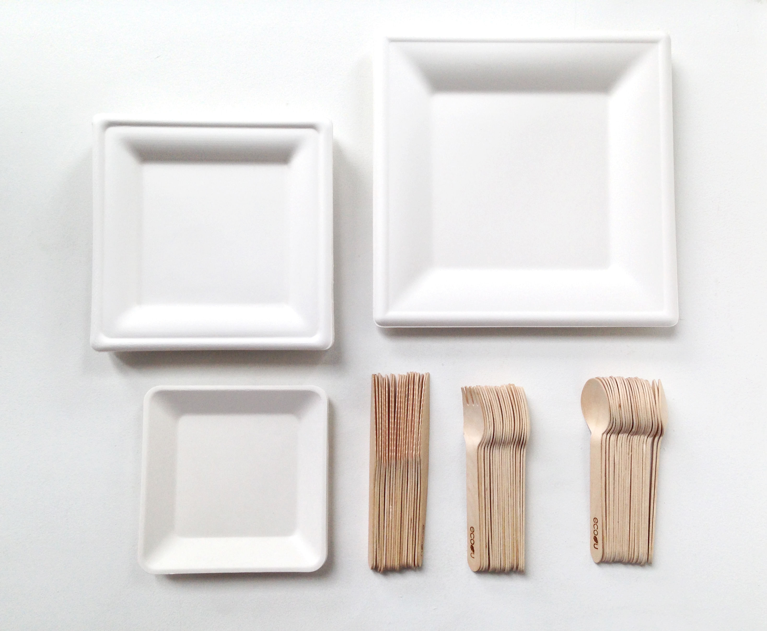 Switch to Eco-friendly Disposable Partyware & Switch to Eco-friendly Disposable Partyware | Home \u0026 Decor Singapore