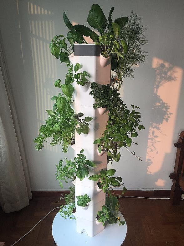 Grow Your Own Vegetables With This Vertical Planter