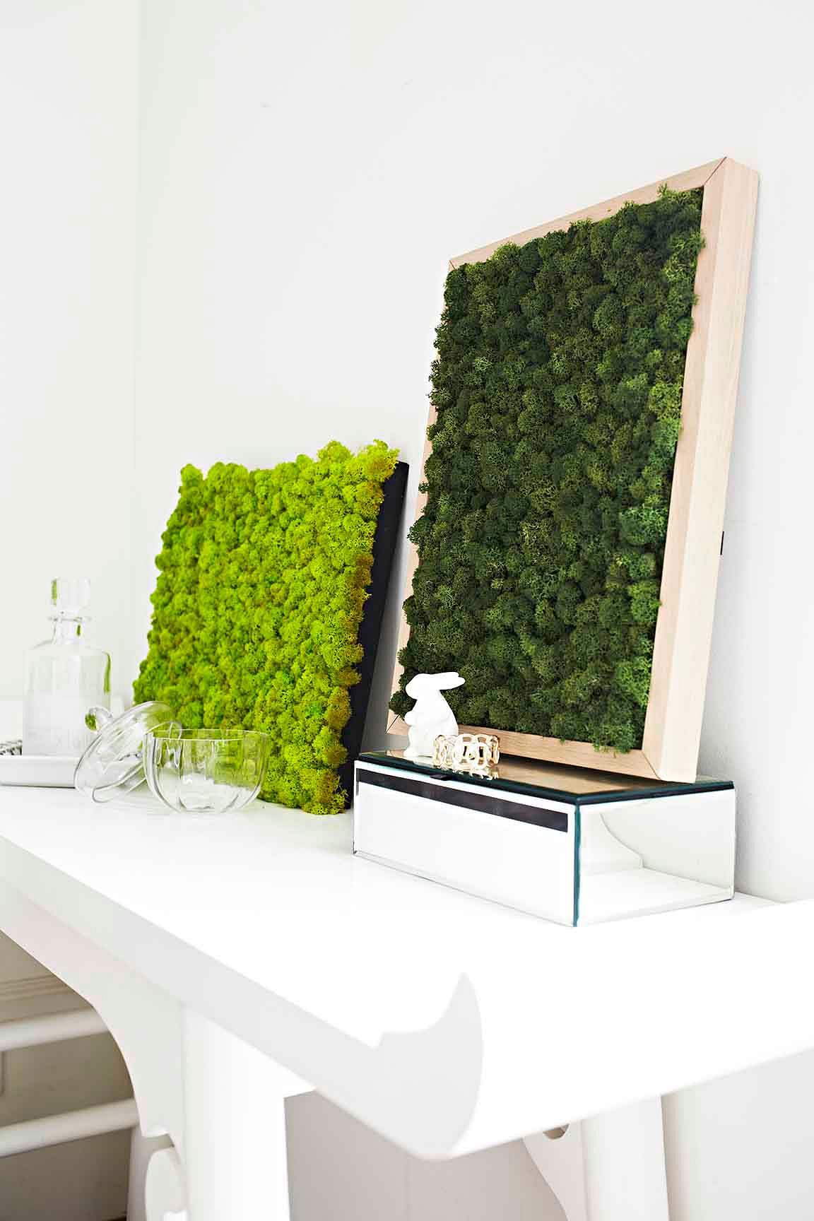 9 Unique Ideas To Display Indoor Plants Home Amp Decor