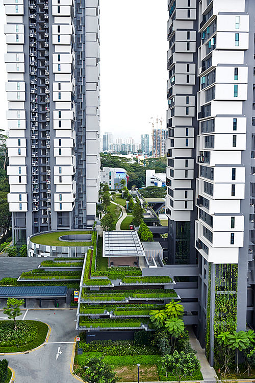 Greenery in sky terrace extends from the facade of the multistorey carpark building to the roof garden above it