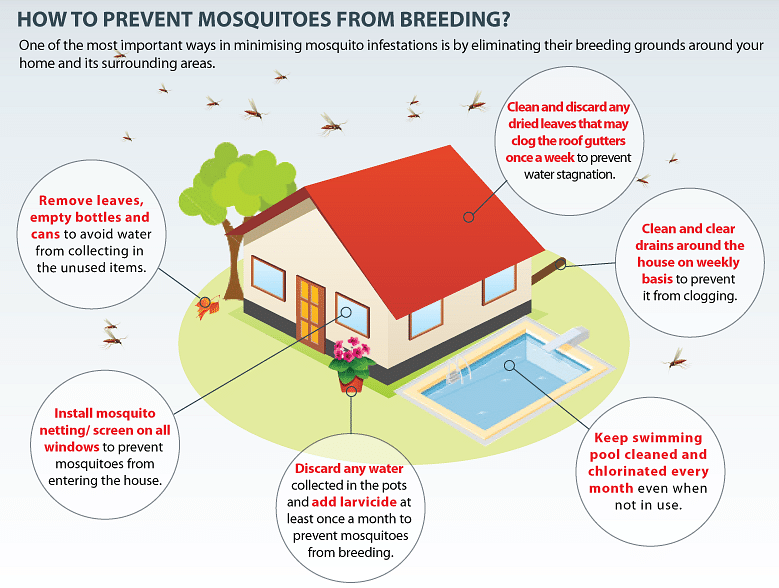 The Mosquito Prevention Checklist You Need And Other Tips
