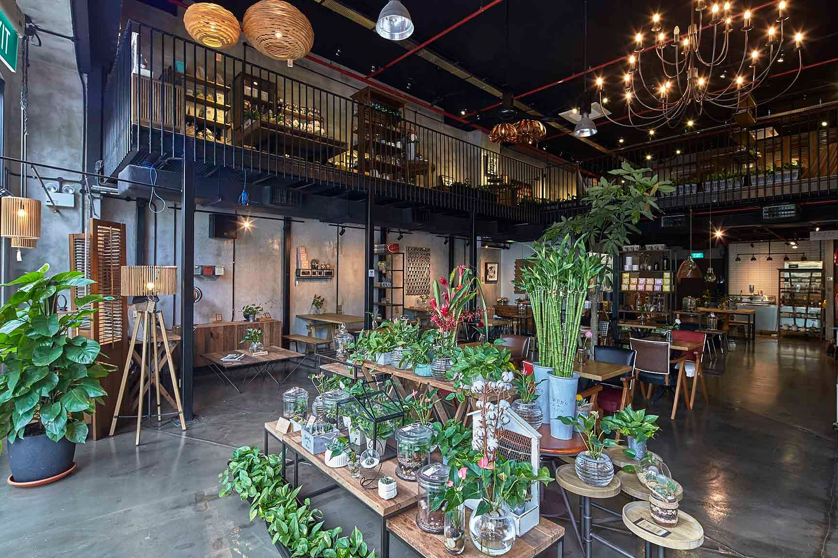 Check out Knots Living a furniture store cafe and flower shop