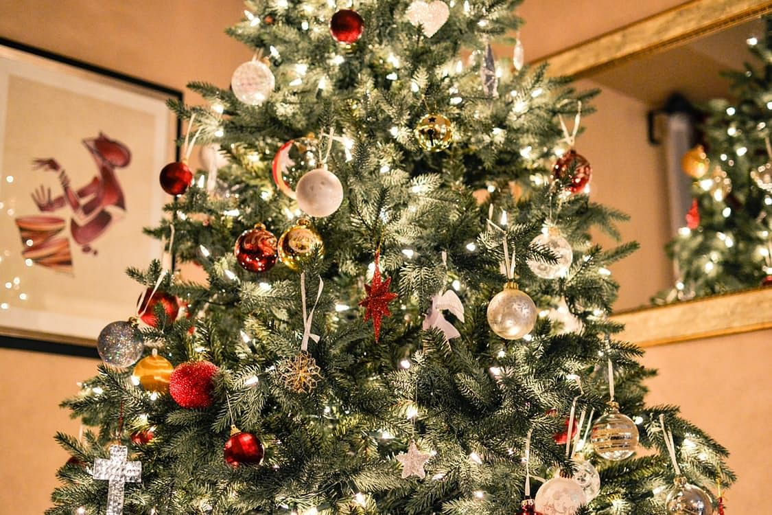 Where To Buy Real Christmas Trees In Singapore For 2018 Home