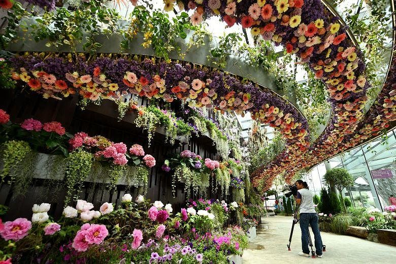 Floral Fantasy at Gardens by the Bay showcases more than ...