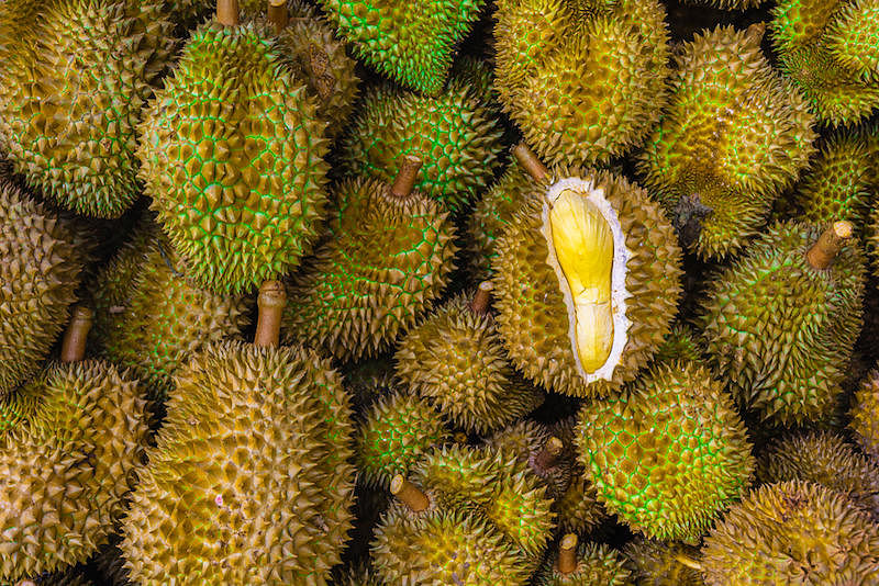 8 best places to get durians in Singapore | Home & Decor