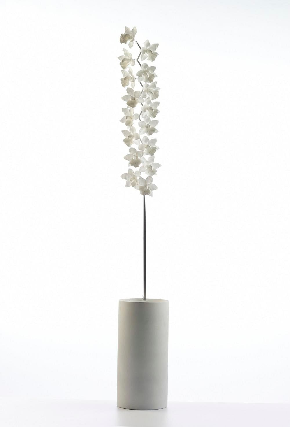 Shopping: Beautiful flora-inspired ceramic lamps by Jeremy Cole 7