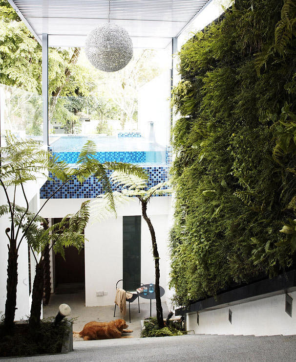 House tours 16 terrace house designs to be inspired by for Terrace house stream online