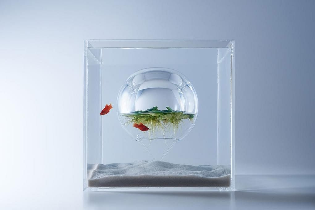 3d printed fish tanks for the minimalist in you home for Inverted fish tank