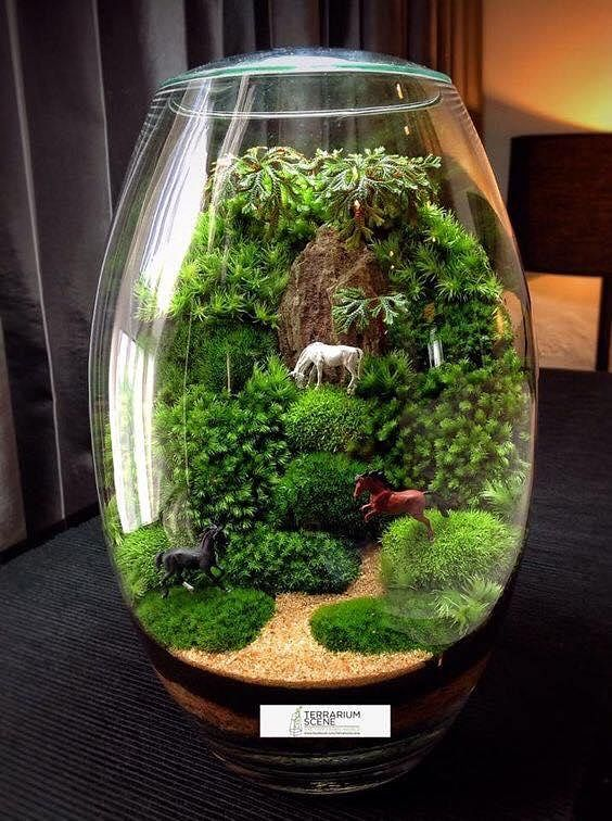 inspiration 15 amazing terrarium ideas with moss ferns air plants and succulents home. Black Bedroom Furniture Sets. Home Design Ideas
