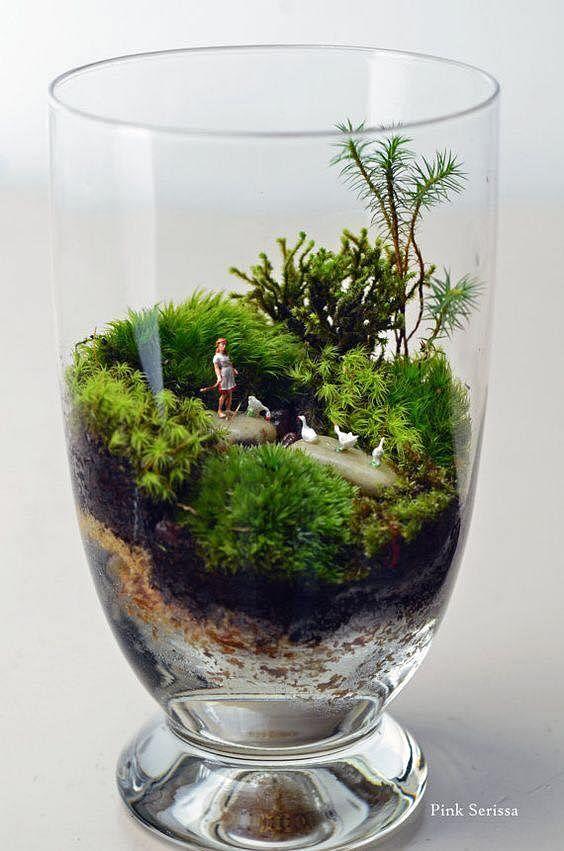 Inspiration 15 Amazing Terrarium Ideas With Moss Ferns Air Plants