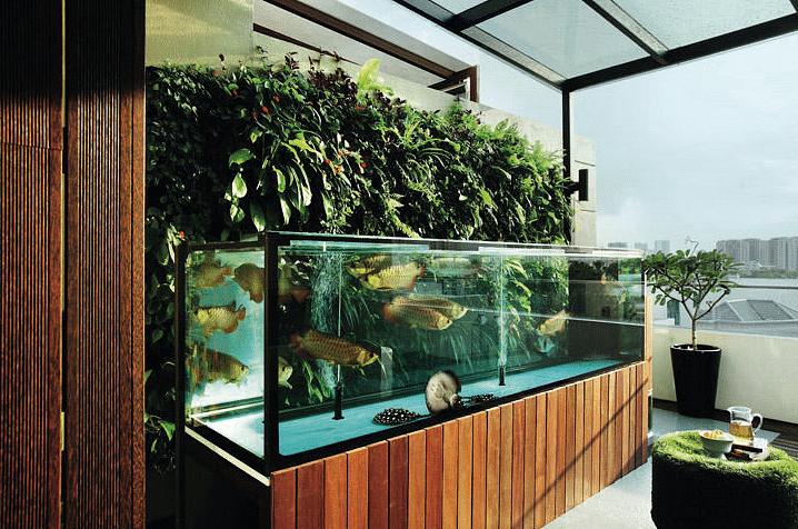 Small Patio Ideas Apartment Plants