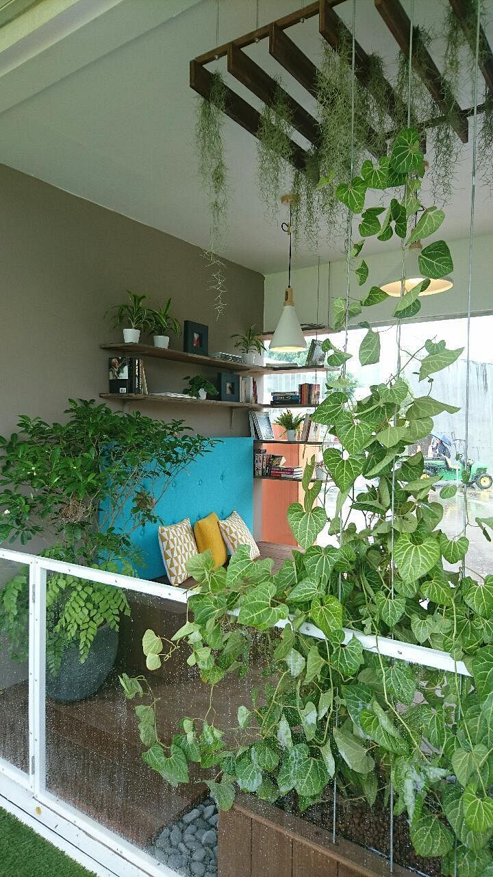 Steal balcony garden design ideas from the Singapore ...