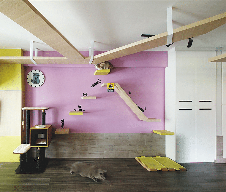House Tour: $90,000 Renovation For This Colourful Cat