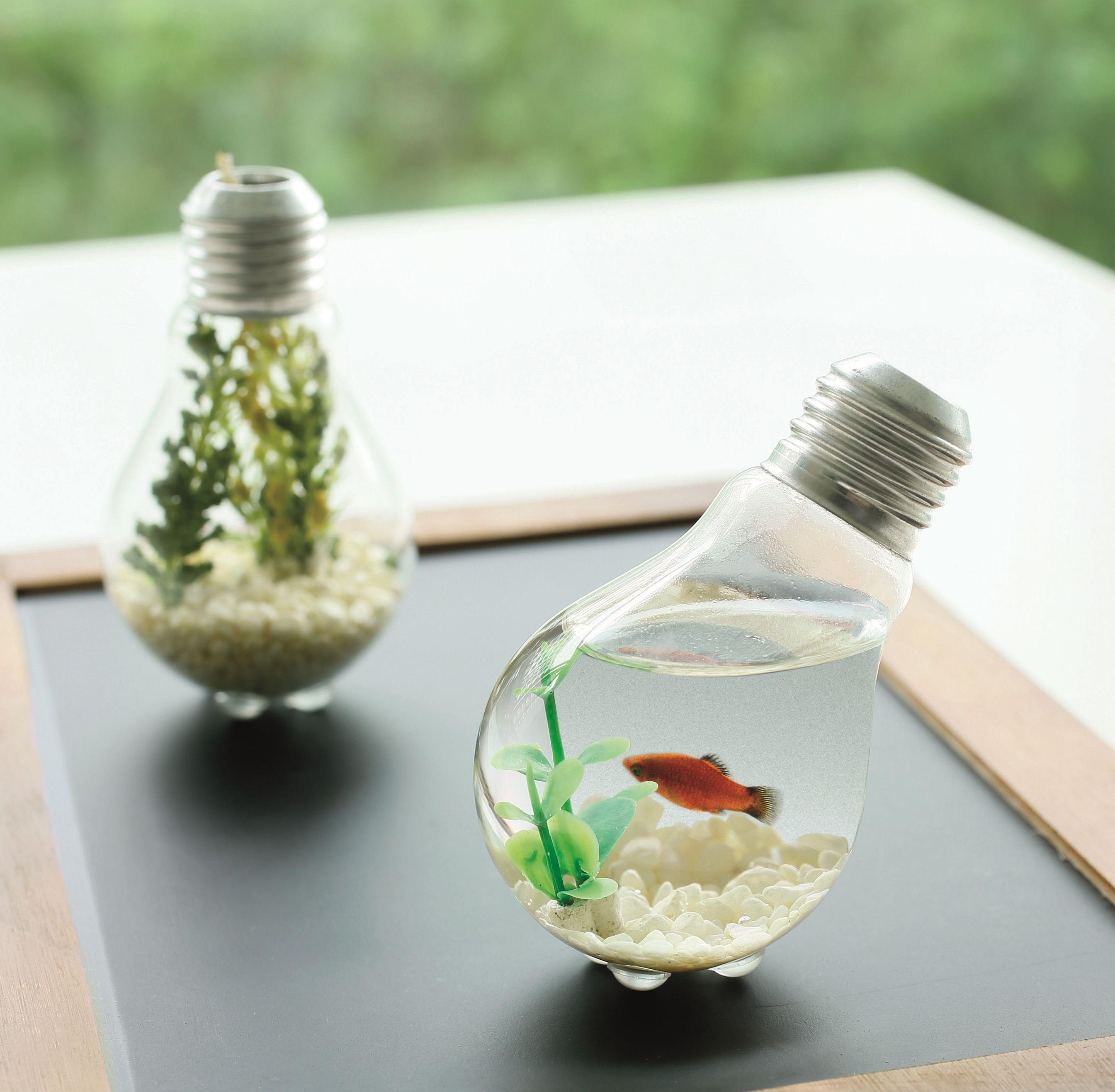 diy, terrarium, desk, revamp, ideas