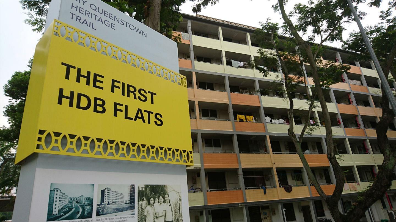 Queenstown flats