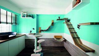 42657-creature-comforts-four-room-hdb-bto-flat