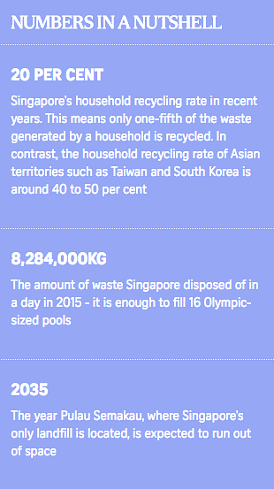green living, recycle, reduce, reuse, recycle, figures of singaporean homes that recycle versus overseas